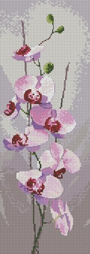 Клейтон-Цветочные панели Orchid Panel Heritage.